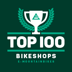 Top 100 logo green
